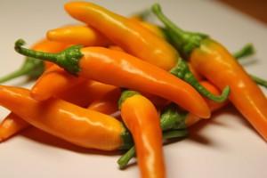 bulgarian carrot