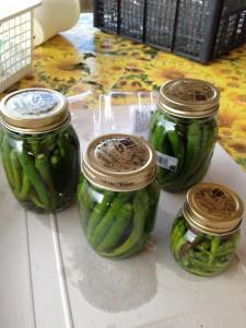 conservare peperoncini sottaceto